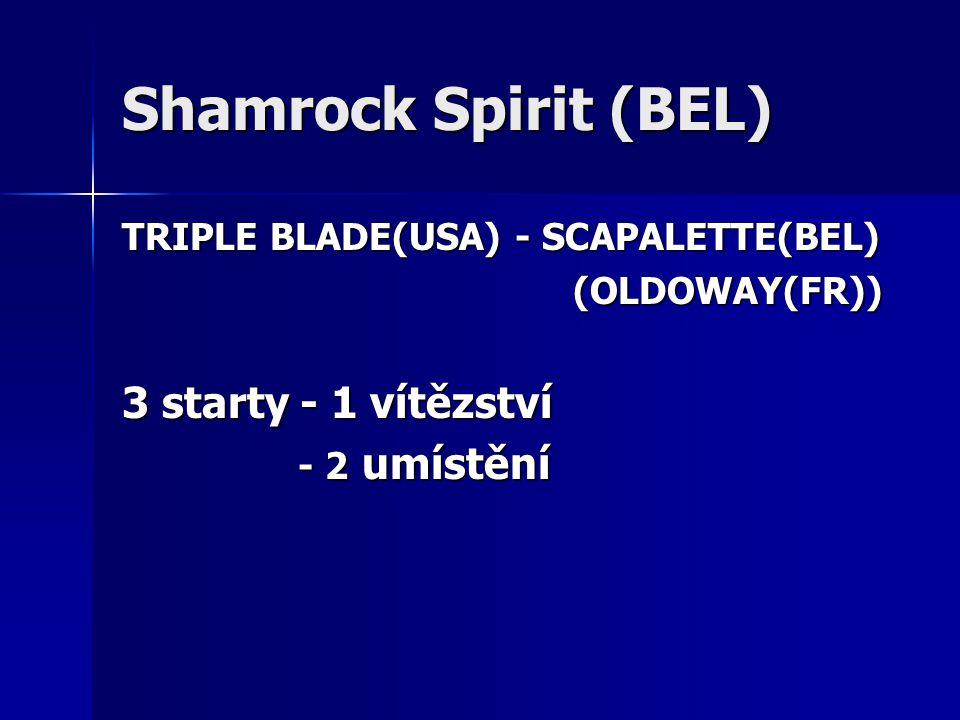 Shamrock Spirit (BEL) TRIPLE BLADE(USA) - SCAPALETTE(BEL) (OLDOWAY(FR)) (OLDOWAY(FR)) 3 starty - 1 vítězství - 2 umístění - 2 umístění