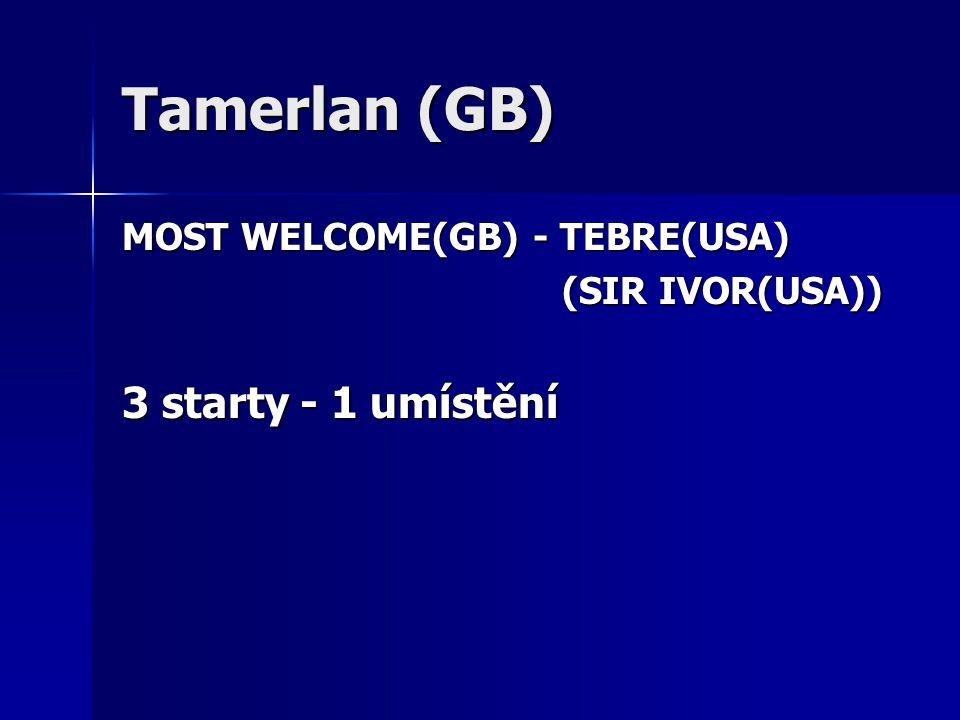 Tamerlan (GB) MOST WELCOME(GB) - TEBRE(USA) (SIR IVOR(USA)) (SIR IVOR(USA)) 3 starty - 1 umístění