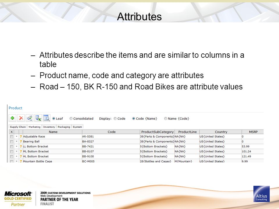 Attributes –Attributes describe the items and are similar to columns in a table –Product name, code and category are attributes –Road – 150, BK R-150
