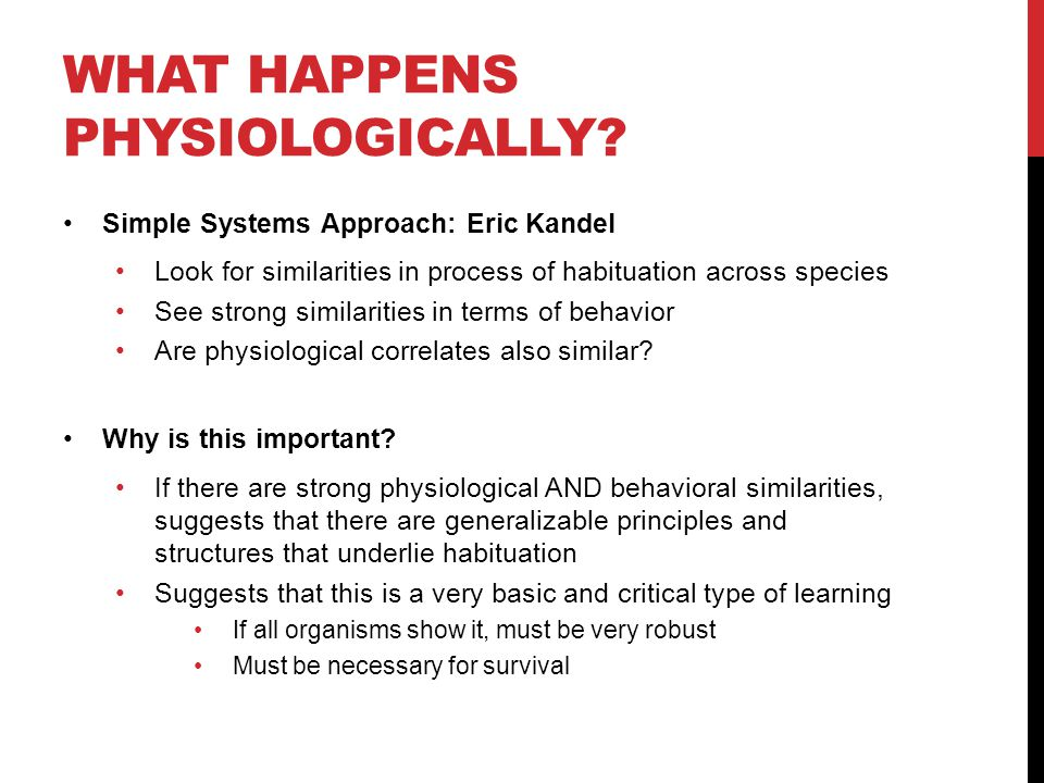 WHAT HAPPENS PHYSIOLOGICALLY? Simple Systems Approach: Eric Kandel Look for similarities in process of habituation across species See strong similarit
