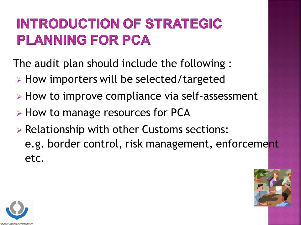The audit plan should include the following :  How importers will be selected/targeted  How to improve compliance via self-assessment  How to manage resources for PCA  Relationship with other Customs sections: e.g.