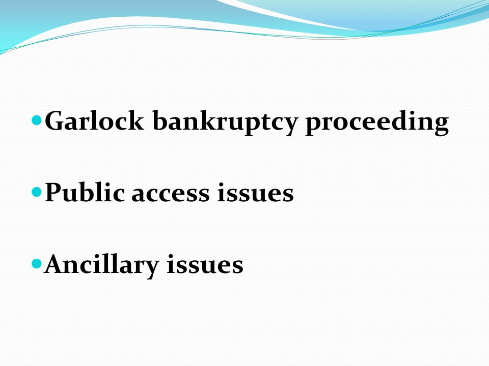 Garlock bankruptcy proceeding Public access issues Ancillary issues