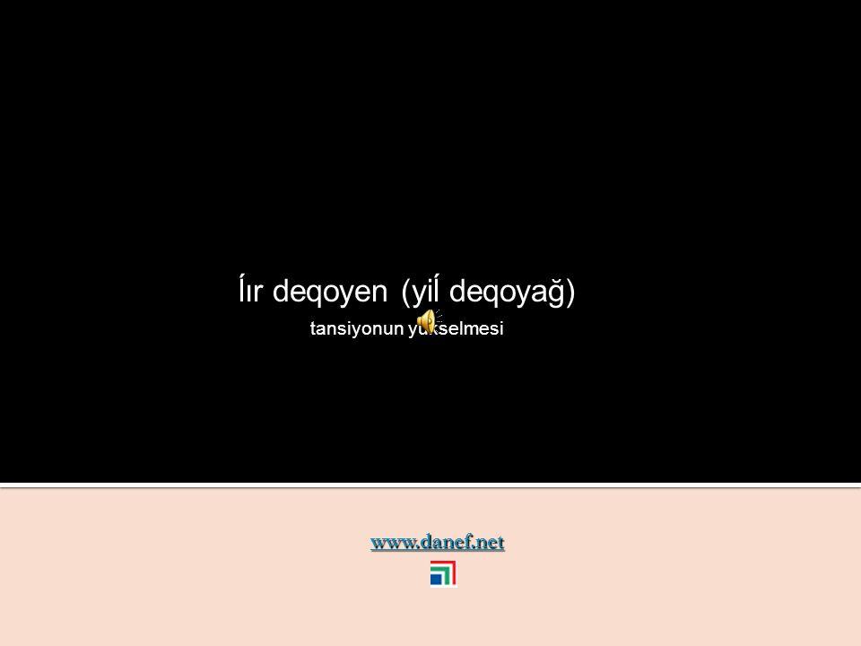 www.danef.net yeğane yara wound