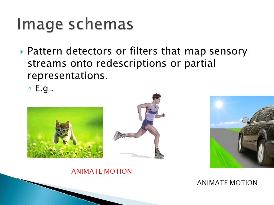  Pattern detectors or filters that map sensory streams onto redescriptions or partial representations.