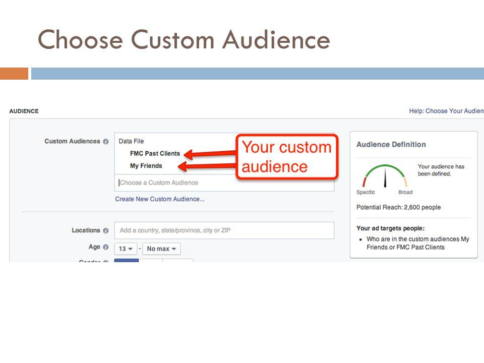 Choose Custom Audience
