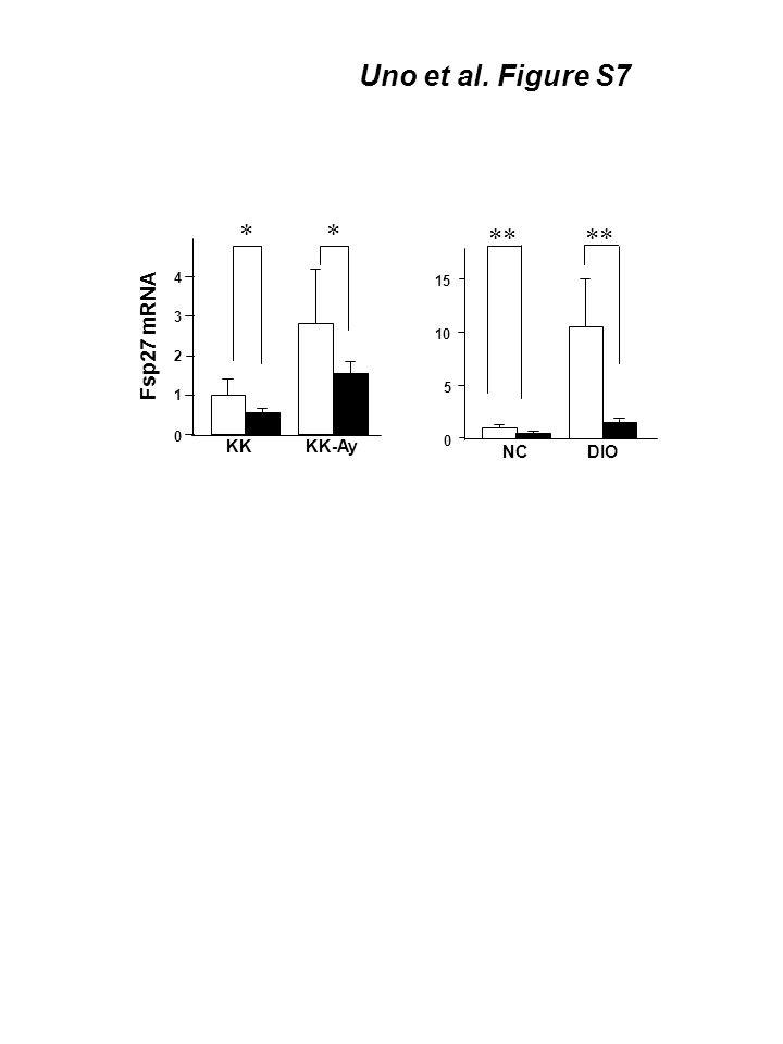 Fsp27 mRNA KK-AyKK 0 1 2 3 4 ** DIONC ** 0 5 10 15 Uno et al. Figure S7
