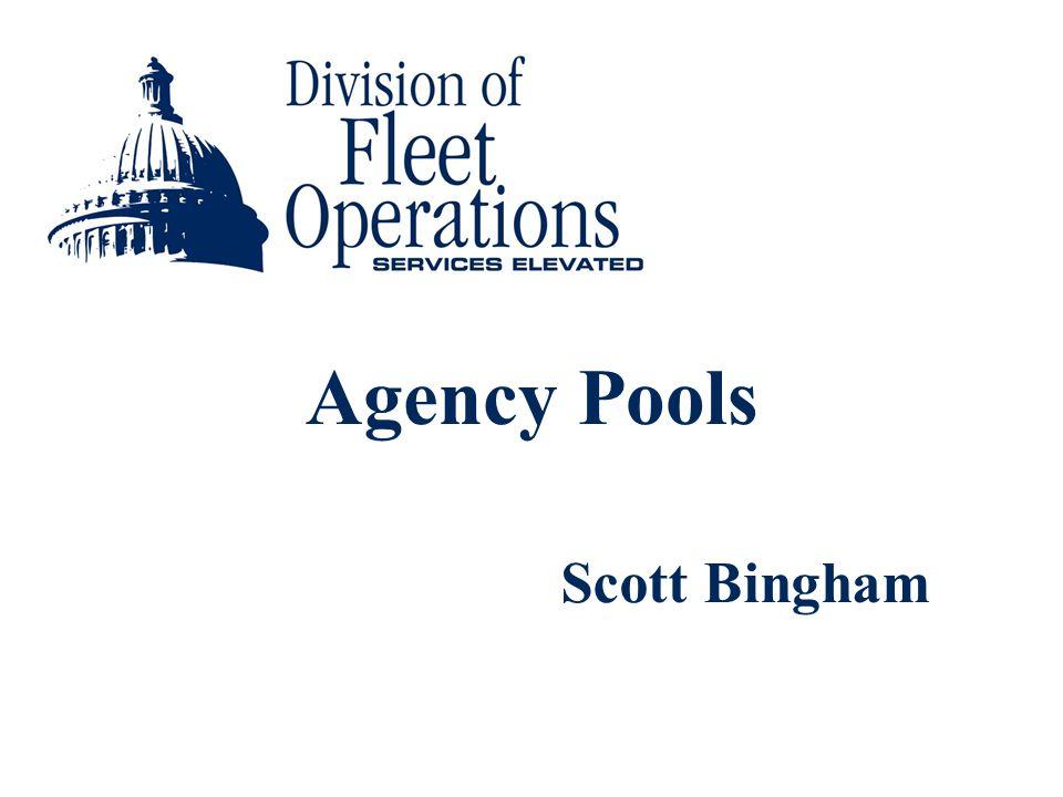 Agency Pools Scott Bingham