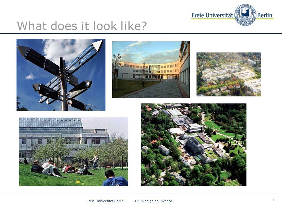 7 Freie Universität Berlin Dr. Wedigo de Vivanco What does it look like