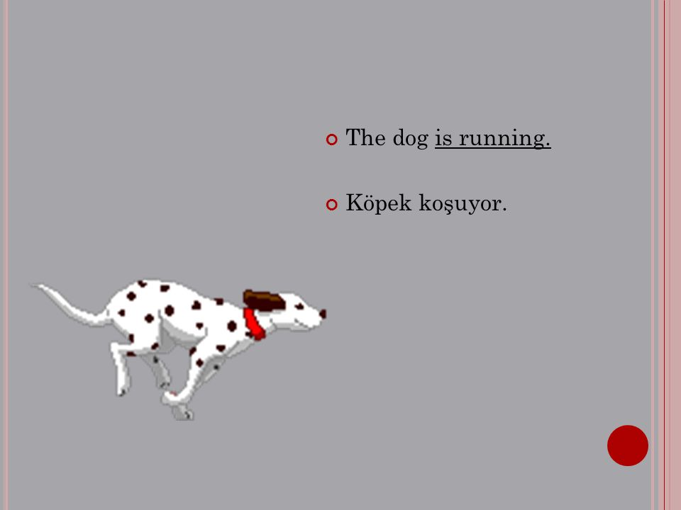 The dog is running. Köpek koşuyor.