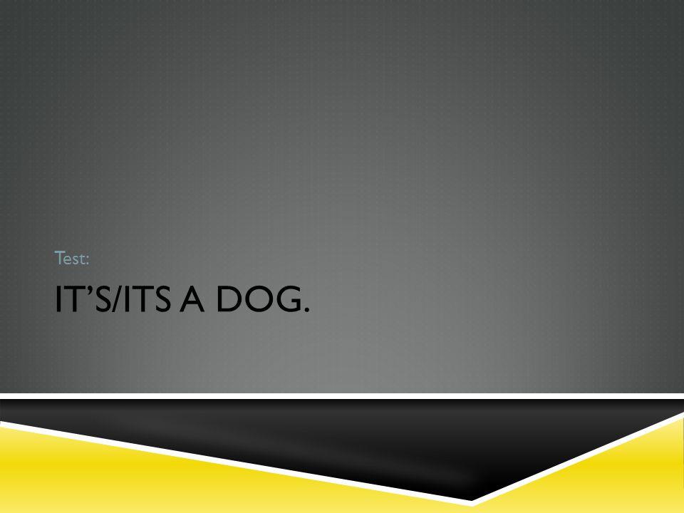 IT'S/ITS A DOG. Test: