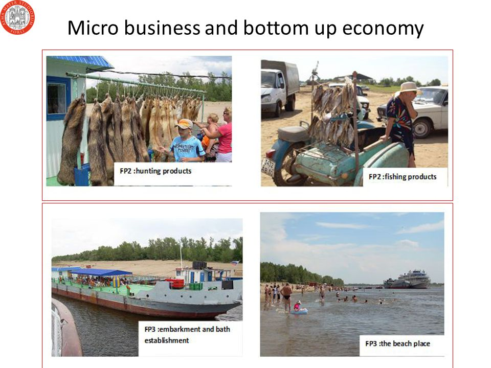 Micro business and bottom up economy