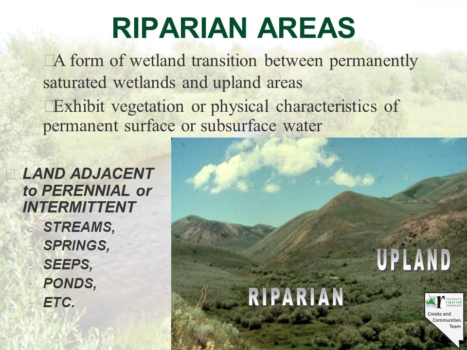 RIPARIAN AREAS §LAND ADJACENT to PERENNIAL or INTERMITTENT l STREAMS, l SPRINGS, l SEEPS, l PONDS, l ETC.