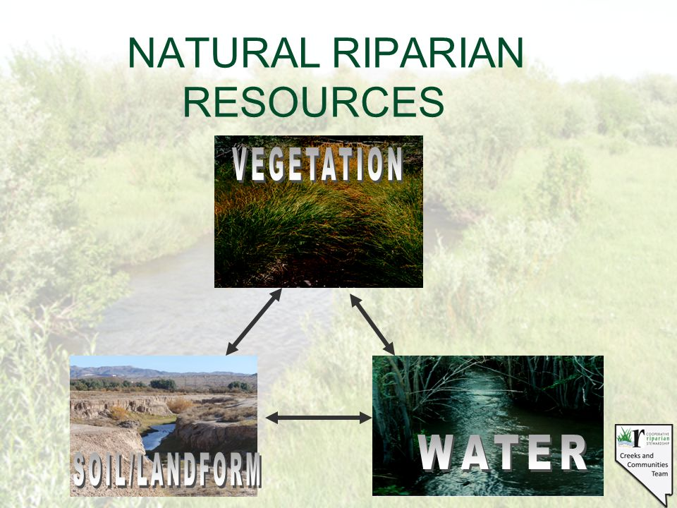 NATURAL RIPARIAN RESOURCES