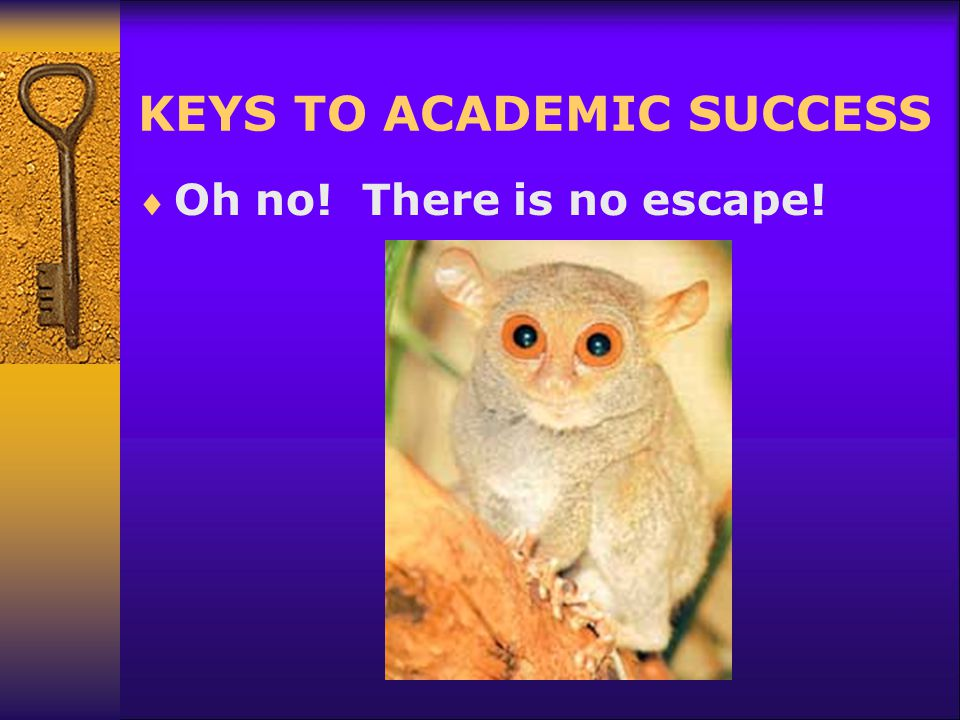 KEYS TO ACADEMIC SUCCESS  Oh no! There is no escape!