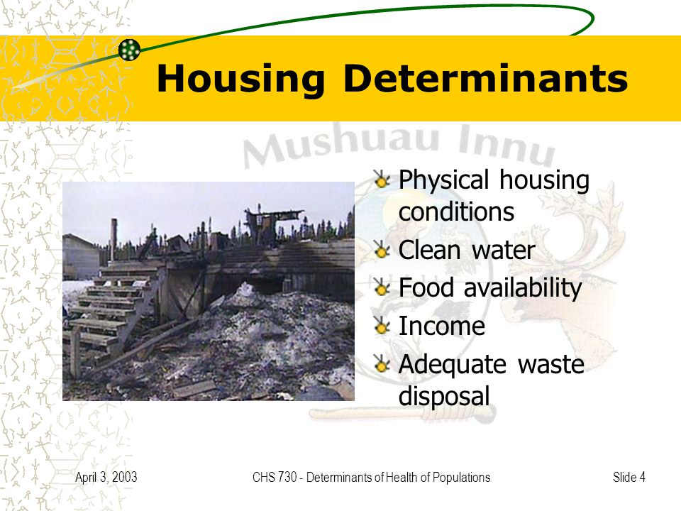 Slide 4 April 3, 2003CHS 730 - Determinants of Health of Populations Housing Determinants Physical housing conditions Clean water Food availability Income Adequate waste disposal