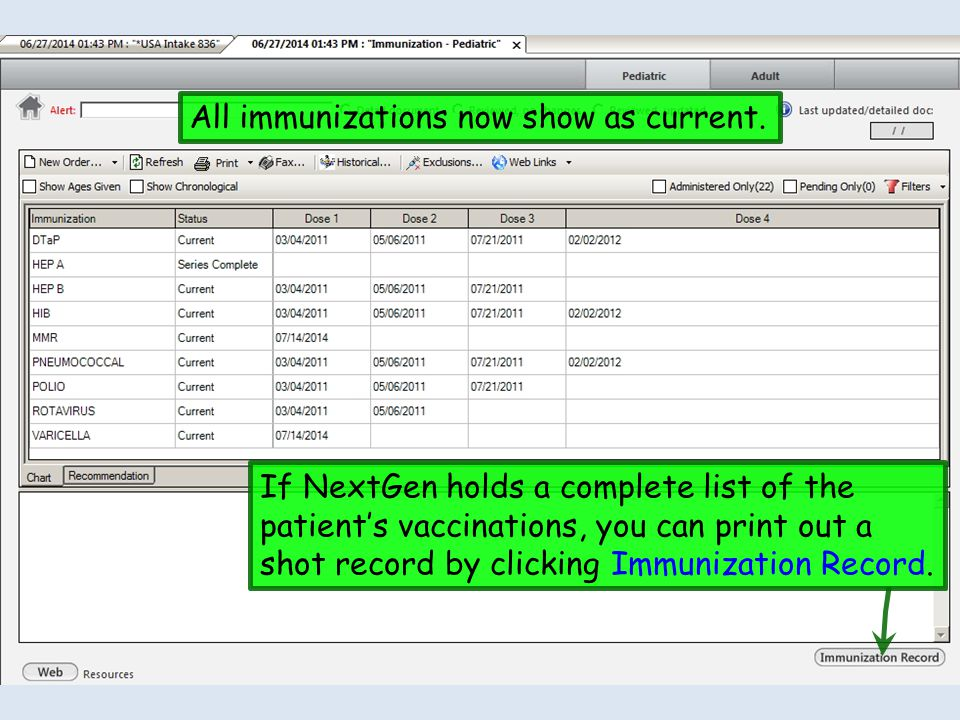 The Immunization – Adult template is very similar, just with fewer vaccines listed.