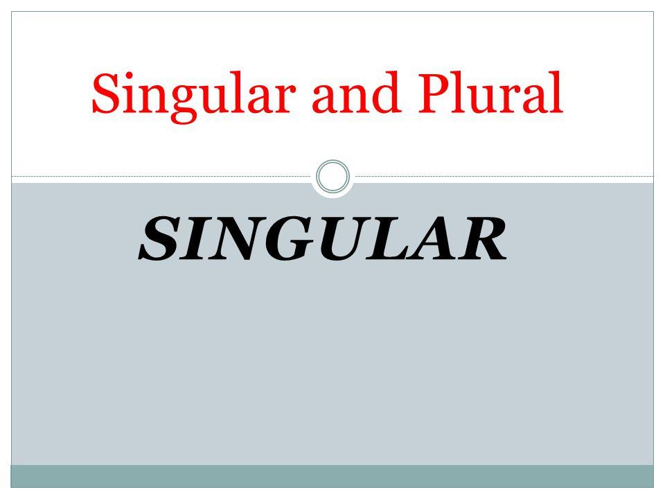 SINGULAR Singular and Plural