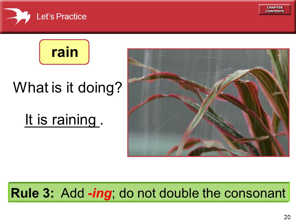 20 It is raining Let's Practice What is it doing.
