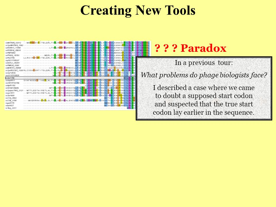 Paradox Creating New Tools In a previous tour: What problems do phage biologists face.