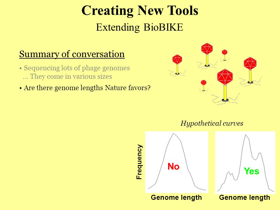 Extending BioBIKE Summary of conversation Sequencing lots of phage genomes … They come in various sizes Creating New Tools Are there genome lengths Nature favors.