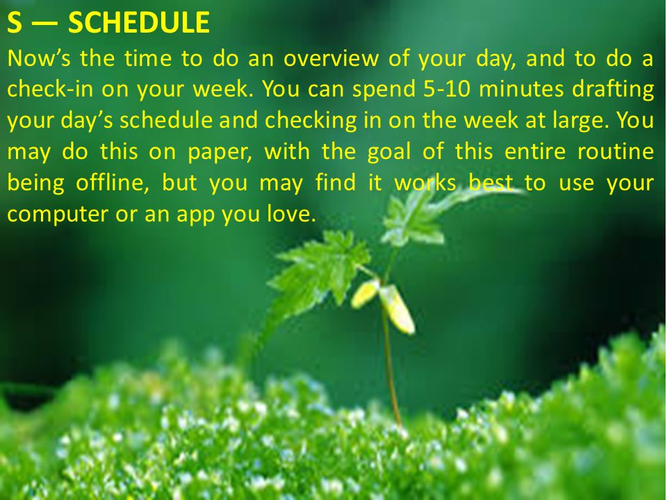 S — SCHEDULE Now's the time to do an overview of your day, and to do a check-in on your week.