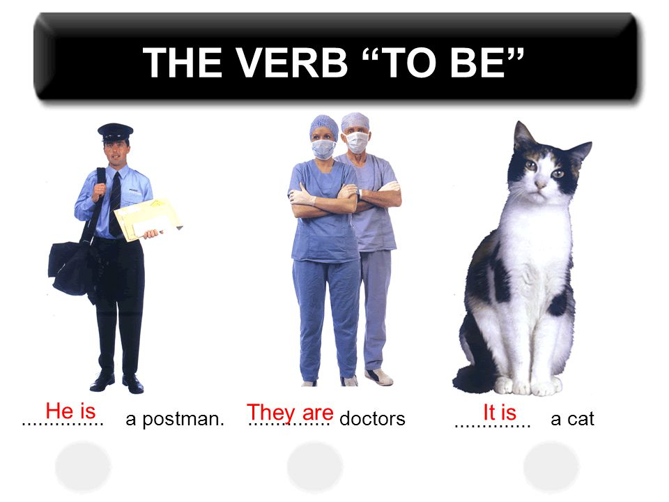 "THE VERB ""TO BE""...............a postman................doctors.............. a cat He is They areIt is"