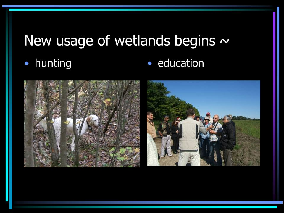 New usage of wetlands begins ~ huntingeducation
