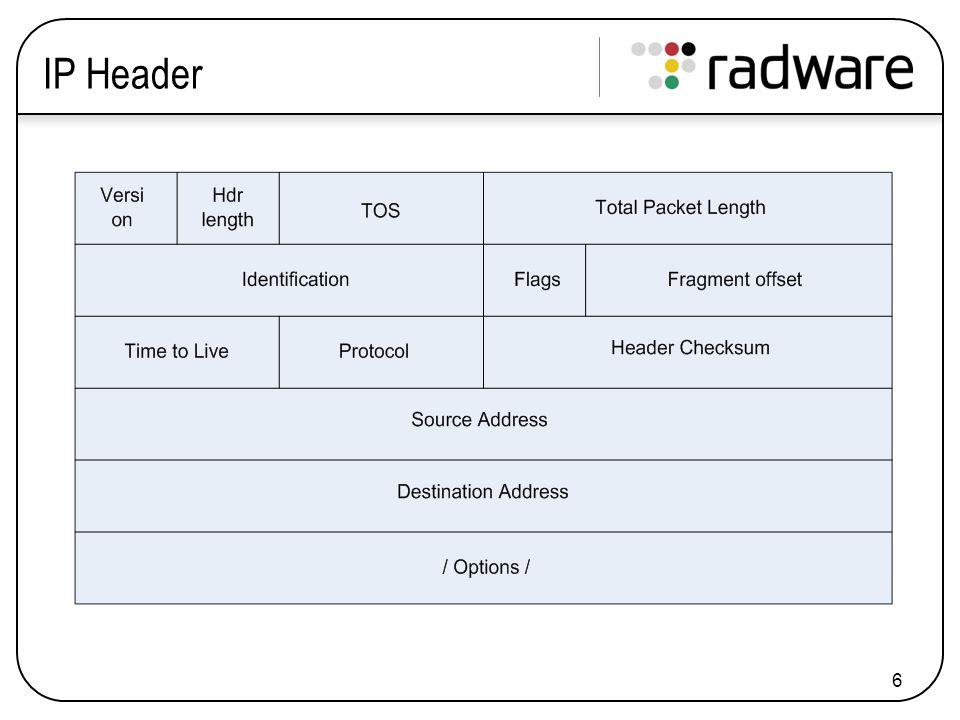 6 IP Header
