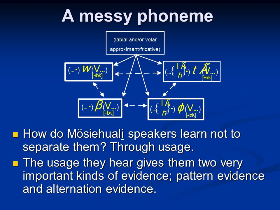 A messy phoneme How do Mösiehuali speakers learn not to separate them? Through usage. How do Mösiehuali speakers learn not to separate them? Through u