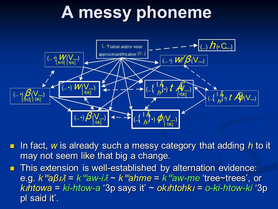 A messy phoneme In fact, w is already such a messy category that adding h to it may not seem like that big a change. In fact, w is already such a mess
