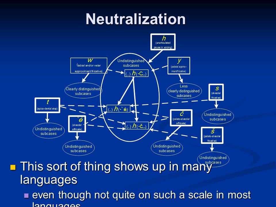 Neutralization This sort of thing shows up in many languages This sort of thing shows up in many languages even though not quite on such a scale in mo