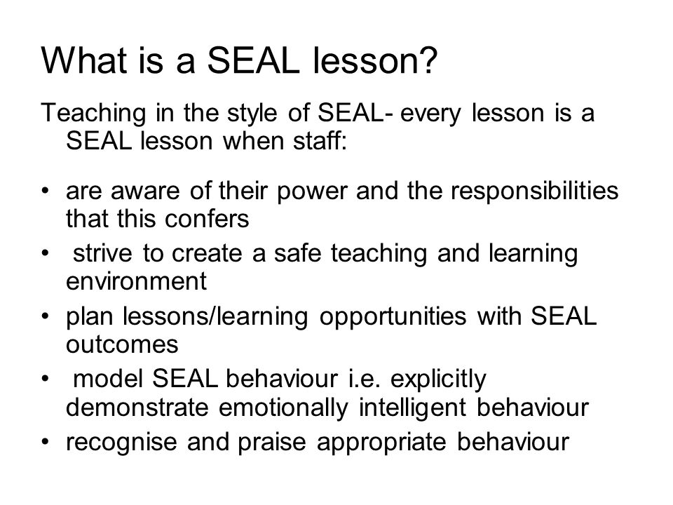 What is a SEAL lesson.