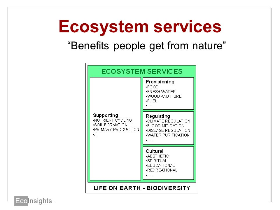Ecosystem services Benefits people get from nature
