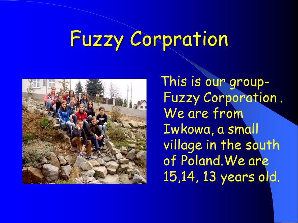 Fuzzy Corpration This is our group- Fuzzy Corporation.