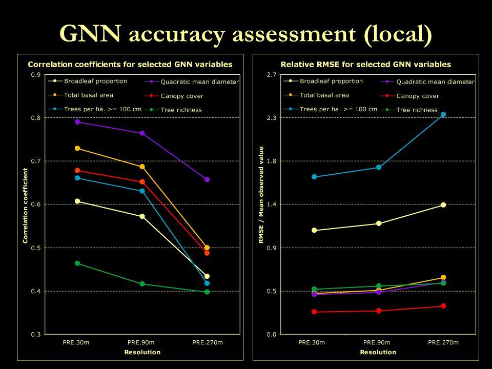 GNN accuracy assessment (local)