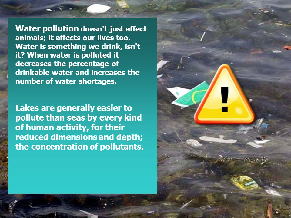 Water pollution doesn t just affect animals; it affects our lives too.
