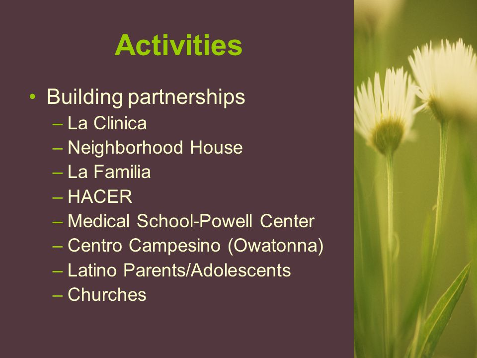Activities Building partnerships –La Clinica –Neighborhood House –La Familia –HACER –Medical School-Powell Center –Centro Campesino (Owatonna) –Latino