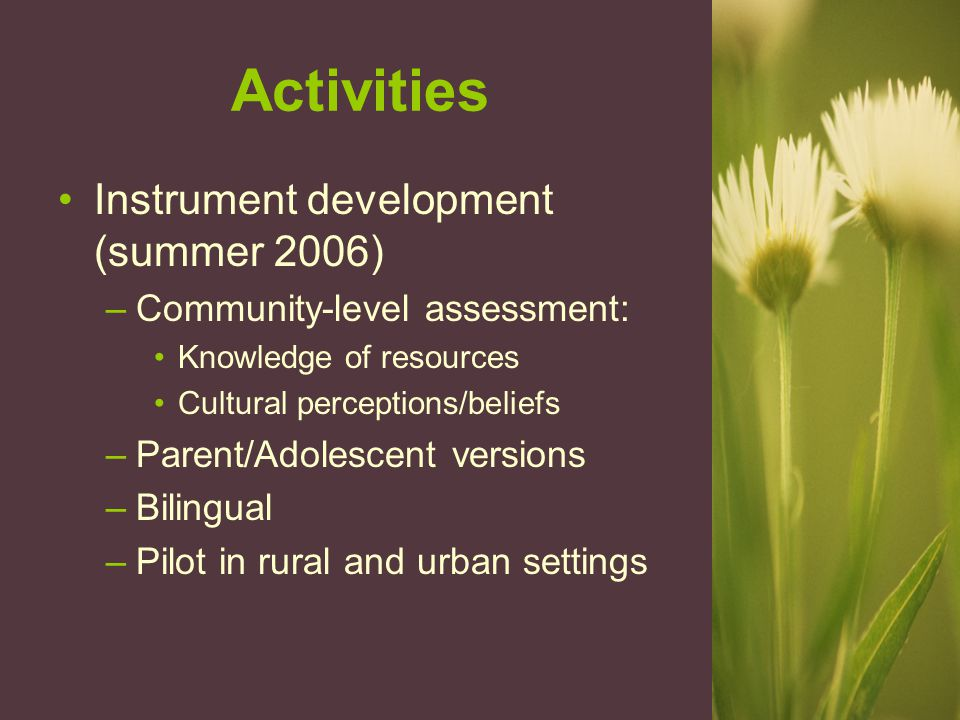 Activities Instrument development (summer 2006) –Community-level assessment: Knowledge of resources Cultural perceptions/beliefs –Parent/Adolescent ve
