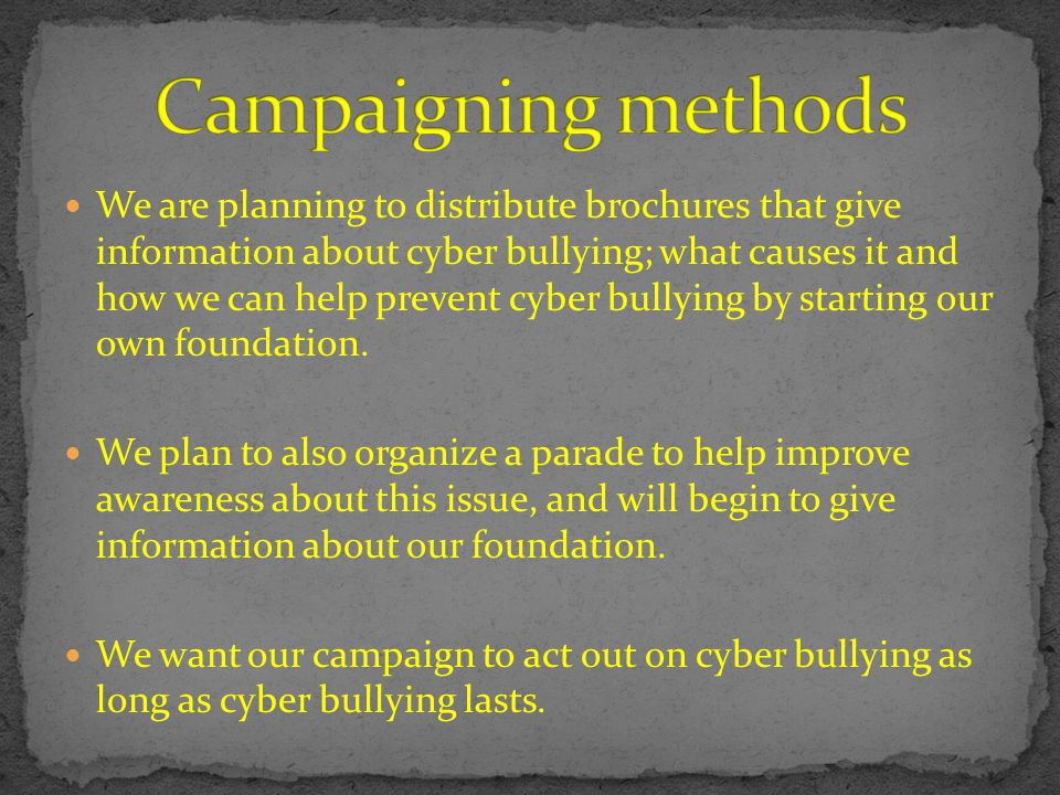 We are planning to distribute brochures that give information about cyber bullying; what causes it and how we can help prevent cyber bullying by starting our own foundation.