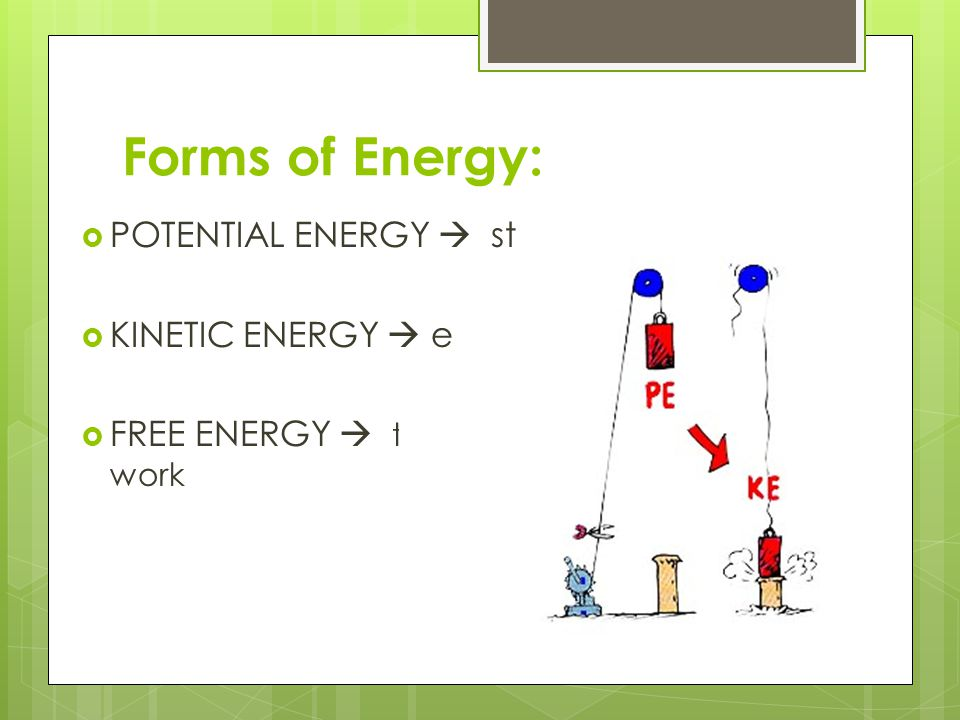 Forms of Energy:  POTENTIAL ENERGY  stored energy  KINETIC ENERGY  energy of motion  FREE ENERGY  the energy available to do work