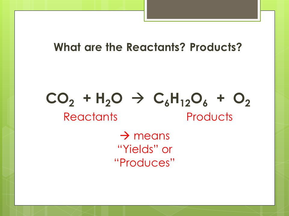 "What are the Reactants? Products? CO 2 + H 2 O  C 6 H 12 O 6 + O 2 ReactantsProducts  means ""Yields"" or ""Produces"""