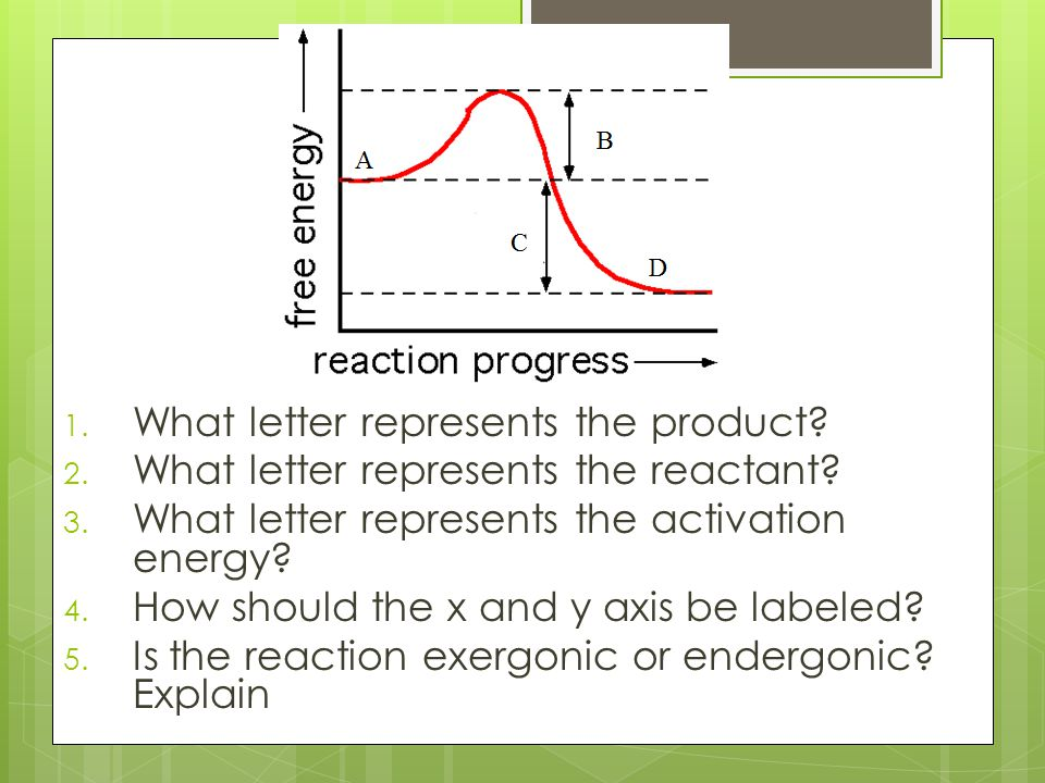 1. What letter represents the product? 2. What letter represents the reactant? 3. What letter represents the activation energy? 4. How should the x an