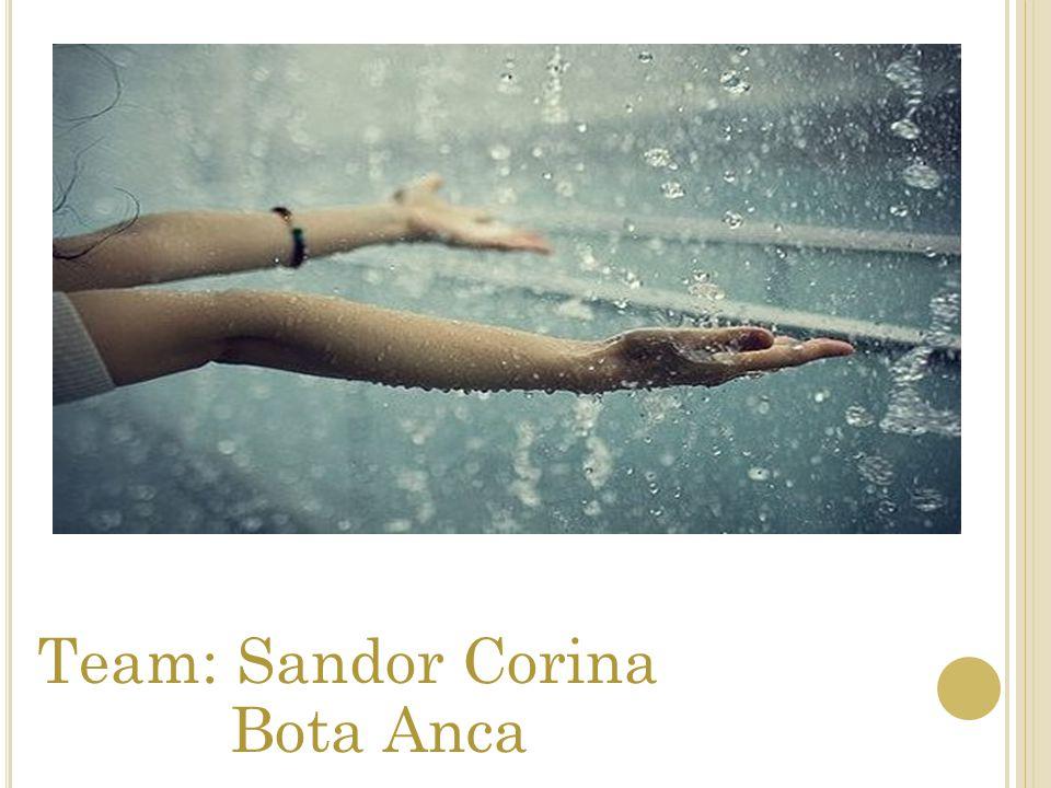 Team: Sandor Corina Bota Anca