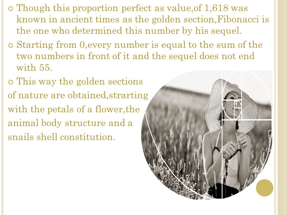 Though this proportion perfect as value,of 1,618 was known in ancient times as the golden section,Fibonacci is the one who determined this number by h