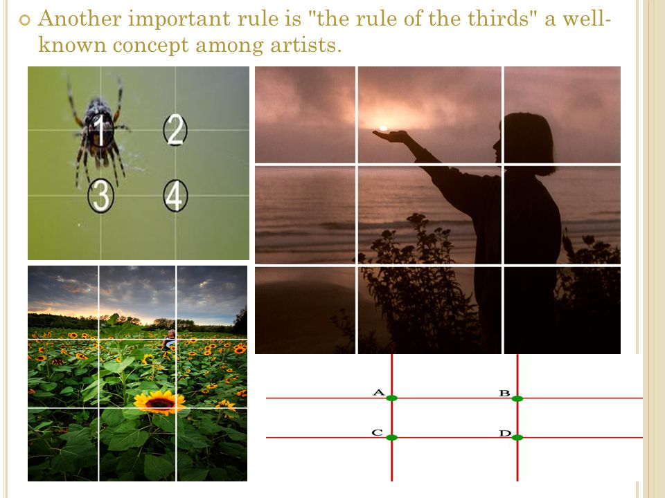 Another important rule is the rule of the thirds a well- known concept among artists.