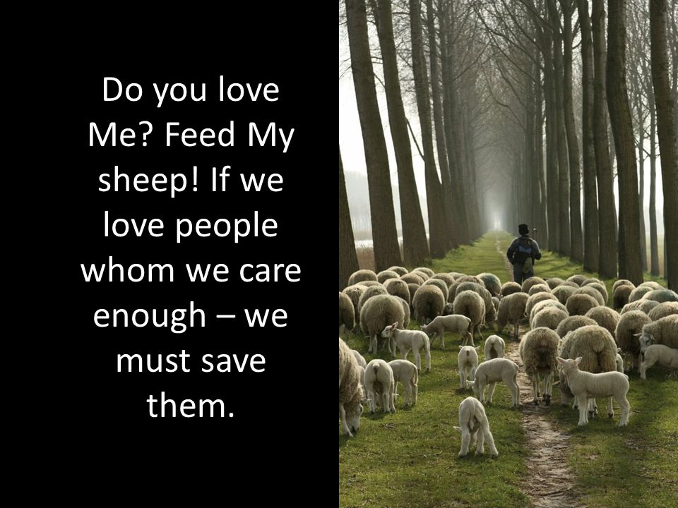 Do you love Me? Feed My sheep! If we love people whom we care enough – we must save them.