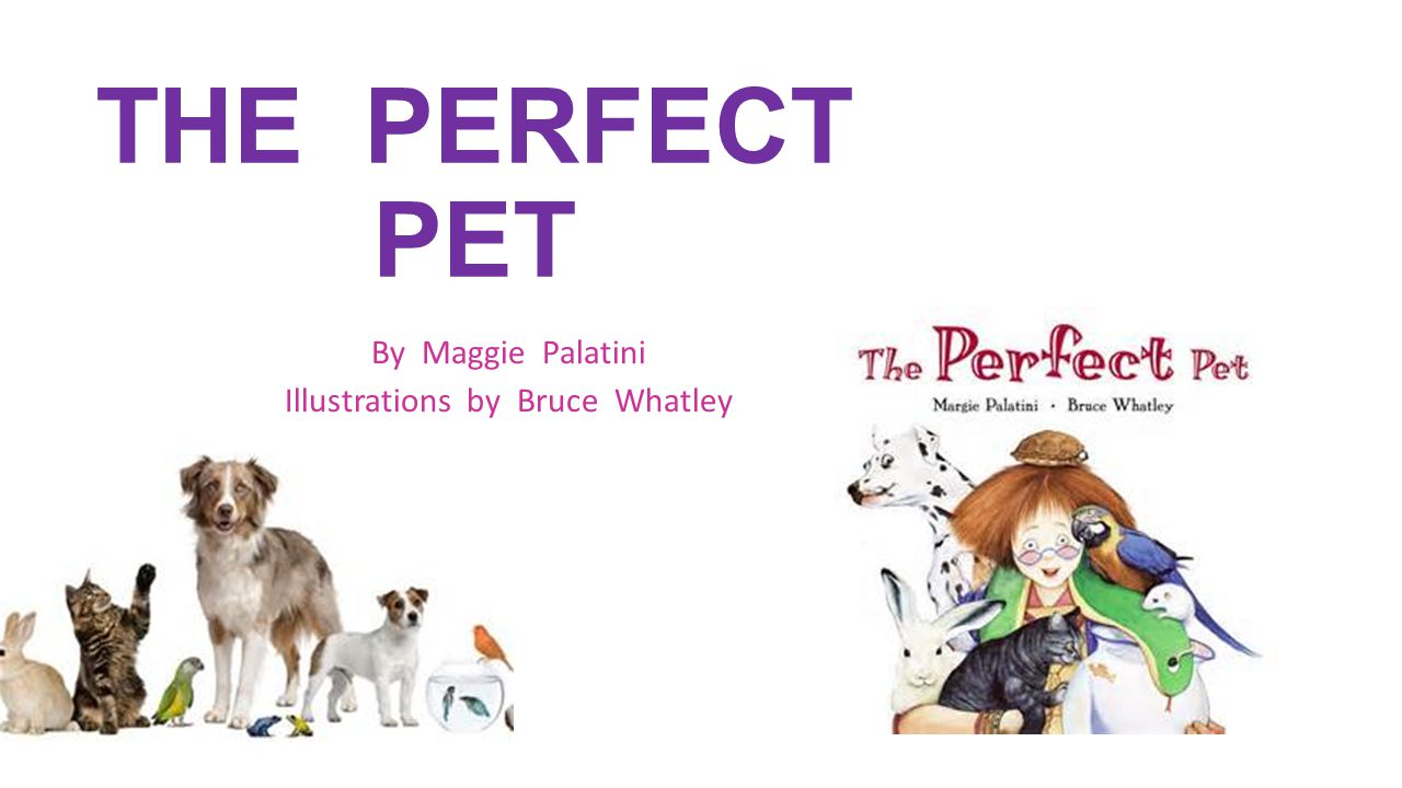 THE PERFECT PET By Maggie Palatini Illustrations by Bruce Whatley
