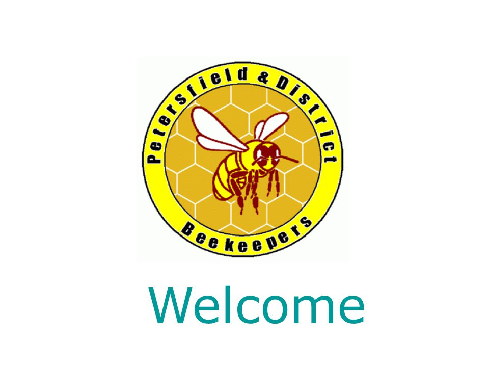 Introduction Brief Outlines about bees and what is involved in being a 'beekeeper'