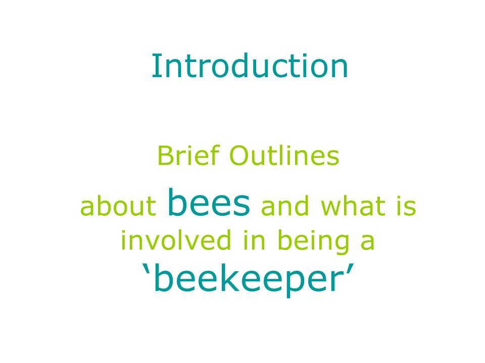 What is a honey bee? It isn't a Bumble bee