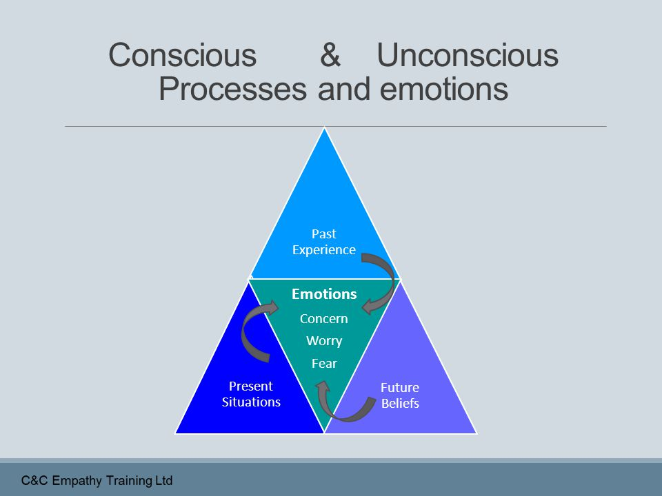 Conscious & Unconscious Processes and emotions Past Experience Present Situations Emotions Concern Worry Fear Future Beliefs